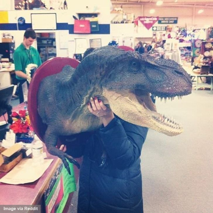 The Most Curious and Unusual Thrift Store Finds We've Ever Seen